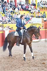 3394. Pablo Hermoso de Mendoza.
