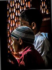 patrickrancoule-1120 (Patrick RANCOULE) Tags: delhi islam enfants inde jeunes garons musulmans moucharabis