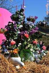 DSC_7461 (Original Loisi) Tags: vienna wien flowers flower nature austria sterreich natur pflanze pflanzen blumen blume garten vienne autriche blten grten hirschstetten blumengarten blumengrten blumengrtenhirschstetten wienhirschstetten wienergrten