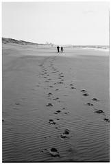 Den Haag (Skaldum) Tags: sea blackandwhite bw film beach monochrome rollei denhaag ilford ilforddelta400 rollei35s