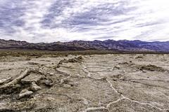 Salt Flats, Death Valley N. P. (punahou77) Tags: california park sky mountain nature clouds nationalpark desert salt deathvalley saltflat westsideroad devilsgolfcourse furnacecreek deathvalleynationalpark stevejordan nikond7100 punahou77