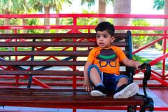 Taking a rest (Ismail Photos) Tags: kuwait ahmadi