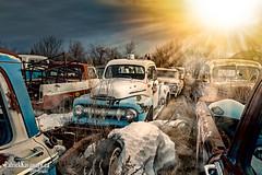 Drop Zone (Pat Kavanagh) Tags: canada cars abandoned rusty alberta trucks rusting pickups taber