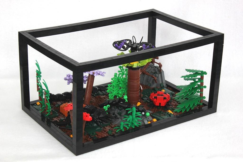 how to kill bugs in terrarium