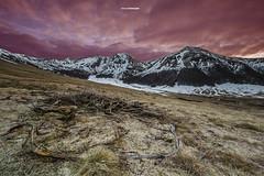 [Explore 15/04/2016] Lueurs matinales (Tekila63) Tags: winter cloud mountain montagne sunrise landscape hiver valley neige nuage paysage auvergne sancy valle fontainesalee
