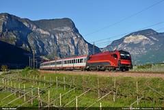 Italian jet (Marco Stellini) Tags: brenner siemens monaco val verona taurus brennero adige eurocity mezzocorona obb 1216 e190 brennerbahn