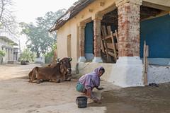 Gond village (wietsej) Tags: street india rural village sony tribal 1670 gond zeis chhattisgarh kawardha sel1670z a7rii