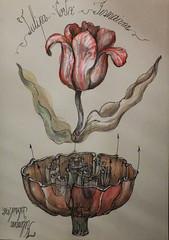 Tulipa Gesneriana 33 (kelemengabi) Tags: vortex nature sphere universal botany imaginary computation tulipa implosion cymatics gesneriana kymatik kelemengabi gabrielkelemen