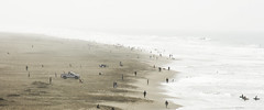 All Good Things, They Say, Never Last (AAcerbo) Tags: ocean sanfrancisco california sea beach water fog haze sand surfer widescreen overcast surfing oceanbeach cropped 241