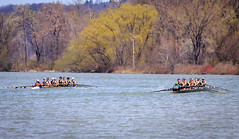 IMG_9214April 24, 2016 (Pittsford Crew) Tags: crew rowing regatta ithaca icebreaker pittsfordcrew
