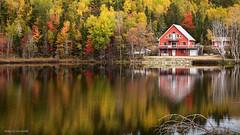 This fall in Canada (Enrico L. ) Tags: red lake canada canon lago eos maple quebec maples rosso colori tadoussac redmaples aceri canadalandscapes coloridautunno canadaphotos canoneos5dmarkiii 5dmarkiii enricolachin enricoeye houselakecanada paesaggicanadesi