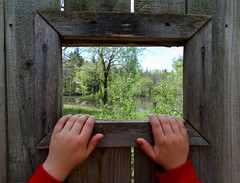 CURIOSITY (Paul McCarthy...) Tags: ohio kids sony naturepreserve delawareohio deerhaven hww libertytwp kidsnature whatkidsdo teamsony sonyhx300 fieldtripsfor enthusiasmofchildren