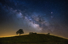 The Lone Tree (rajaramki) Tags: nightphotography lonetree milkyway pinnaclesnationalmonument pinnaclesnationalpark bayareanightphoto
