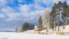 TRAKAI (zeniussakalauskas) Tags: blue trees winter snow beautiful heaven trakai