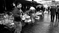 OK, guy (Barbara Oggero) Tags: street city people urban fish guy turkey market candid streetphotography istanbul fresh grill meal local capture caught galata paceful