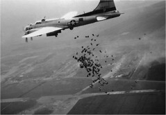 American B17 Drops food over Schiphol Airport during operation Chow Hound, 1945 [960  666] #HistoryPorn #history #retro http://ift.tt/1r8GqTI (Histolines) Tags: food history during drops airport over hound 666 retro b17 american chow timeline operation 1945 schiphol 960  vinatage historyporn histolines httpifttt1r8gqti