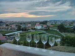 Bodegas Martin Codax (carlossg) Tags: glasses spain martin wine galicia abel cambados codax