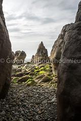 Grottes de Jobourg-13 (Gwenn Dubourthoumieu) Tags: france nature normandie geo ecologie environement crapahut grottesdejobourg