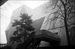 elephant (generalzorn) Tags: city urban film ilfordhp5 coventry pentaxespio140