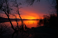 Shepherd's Warning (ewan_bnd) Tags: reflection silhouette sunrise scotland scenery unitedkingdom gb loch lochlomond luss