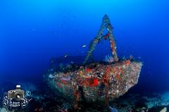 Landing Craft (ShaunMYeo) Tags: scubadiving gibraltar landingcraft wrecks calpe underwaterphotography  gibilterra ikelite      gibraltr  cebelitark gjibraltar ibraltaro hibraltar xibraltar giobrltar gibraltrs gibraltaras ibilt