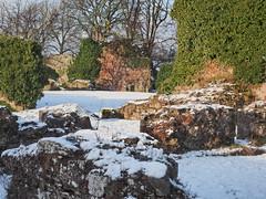 Lindores Abbey in snow-1300393 (E.........'s Diary) Tags: snow abbey scotland fife eddie distillery newburgh lindores rossolympusomdem5markiiscotlandjanuary2016snow