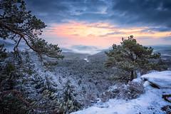 Winterland (Daniel Vogelbacher) Tags: schnee winter snow nature sunrise canon germany deutschland europa natur sonnenaufgang pfalz rheinlandpfalz rhinelandpalatinate palatinate dahnerfelsenland heidenpfeiler schlüsselfels