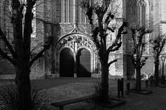 bench (Jan Jacob Trip) Tags: door shadow bw white black tree church window netherlands wall contrast bench leiden pavement gothic pancras kerk hooglandse