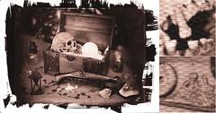 Pirates treasure (Nagy Krisztian) Tags: brown skull pirates vandyke