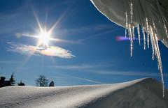 Winter Storm 2016 (wvsawwhet) Tags: winter snow wv westvirginia fairmont sunsetsunrise marioncounty