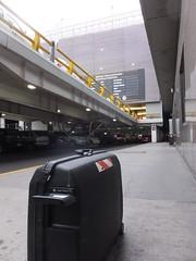 Awaiting pickup (stevenbrandist) Tags: morning travel mexico mexicocity luggage suitcase travelogue samsonite