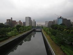 IMG_8672 (Momo1435) Tags: japan tokyo koto kotoku