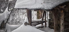 Carmbano/ Icicle (Jose Antonio. 62) Tags: espaa snow cold ice beautiful photography spain cabin colours nieve asturias icicle fro hielo cabaa carmbano