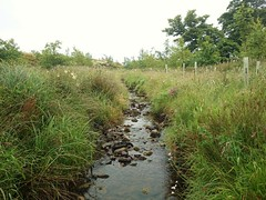 Easington Brook