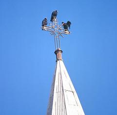 Atacama Trinity (Dick Culbert) Tags: chile church cross vultures atacamadesert