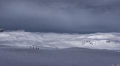 Athos, Aramis, Porthos & D'Artagnan (bent inge) Tags: winter snow norway march photographer skiing telemark snowymountains hardangervidda haukeli 2016 vinje vgsli norwegianmountains nikond810 norwegianwinter bentingeask