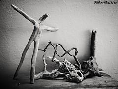 Natural Arte (Fábio & Carol - Itaí - SP - Brasil) Tags: brazil blackandwhite bw nature brasil arte natureza artesanato tronco madeira pretoebranco américadosul raiz criatividade monocromático itaísp