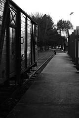 Il ne partira pas (alfred_couac) Tags: old white black train dock solitude noir loneliness blanc quai vieux