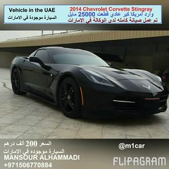 2014 Chevrolet Corvette Stingray   25000          200                       00971567176 (mansouralhammadi) Tags:            fromm1carusatoworld