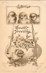 Surprise-Filled Egg (Calsidyrose) Tags: art illustration vintage paper easter typography design graphic postcard victorian ephemera american font americana chicks greetings penmanship
