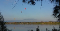Balloons over the lake (spelio) Tags: water festival mar hotair balloon australia canberra act 2016 lakeburleygriffin