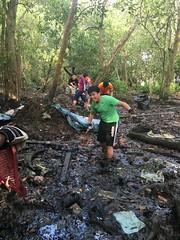 8-Env&CivSoc-World-Water-Day-LCK-Cleanup-26Mar16 (Habitatnews) Tags: mangrove capt nus worldwaterday limchukang iccs