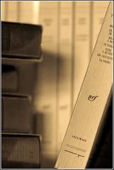 MacroMondays#inheritance (objet introuvable) Tags: light macro monochrome canon reading book bokeh inheritance macromondays canon70d