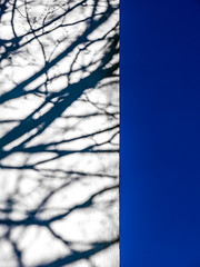 104/366 Contrasts - 366 Project 2 - 2016 (dorsetpeach) Tags: blue shadow england white contrast dorset 365 dorchester 2016 366 aphotoadayforayear 366project second365project