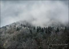 Passing Storm (FiddleFlix) Tags: morning usa snow storm mountains fog northcarolina blueridgeparkway mtpisgah buckspringsoverlook