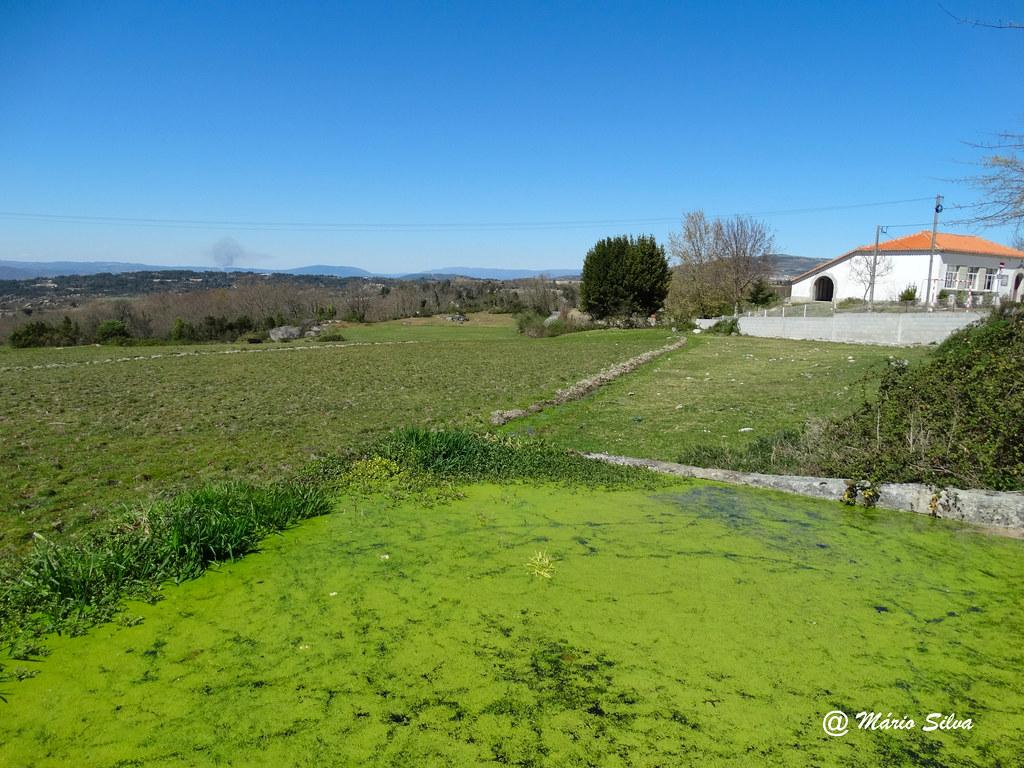 Águas Frias (Chaves) - ... o tanque verde e o verde dos campos ...