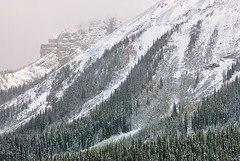 Canada, early snowfall (Vittorio Ricci (THANKS+++2.1 MILLIONS VIEWS)) Tags: canada rockymountains canadianrockymountains