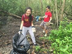 3-Env&CivSoc-World-Water-Day-LCK-Cleanup-26Mar16 (Habitatnews) Tags: mangrove capt nus worldwaterday limchukang iccs