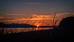 Mutiny Bay Sunset.jpg (Eye of G Photography) Tags: sunset usa beach grass places whidbeyisland northamerica pugetsound washingtonstate sunsetsunrise skyclouds beachgrass