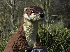 LEGO Otter Hiding In The Woods (saxman1597) Tags: portrait england nature animal statue lego otter nikond3300 washingtonwetlandcentre tamronsp70300divcusd
